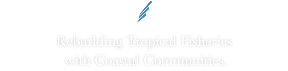BLUE WING -WINGS FOR CHANGE- 「Rebuilding Tropical Fisheries with Coastal Communities.」