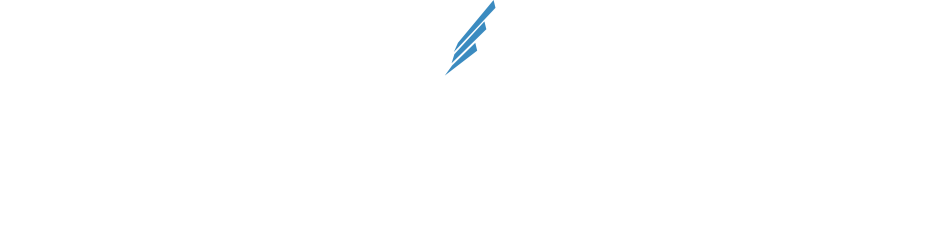 BLUE WING -WINGS FOR CHANGE- 「Financial services for the underbanked. Economic opportunity for billions.」